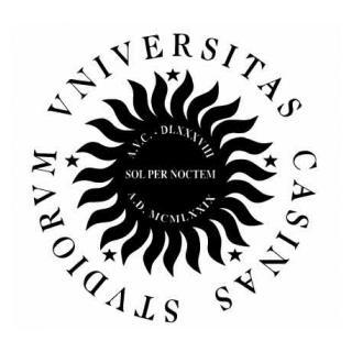 Universita-degli-studi-di-Cassino